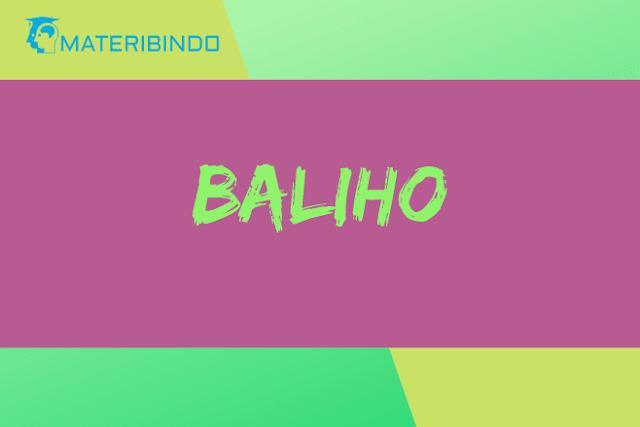 Baliho (Pengertian, Fungsi, Ciri-ciri, Bahan, Ukuran, & Contohnya)